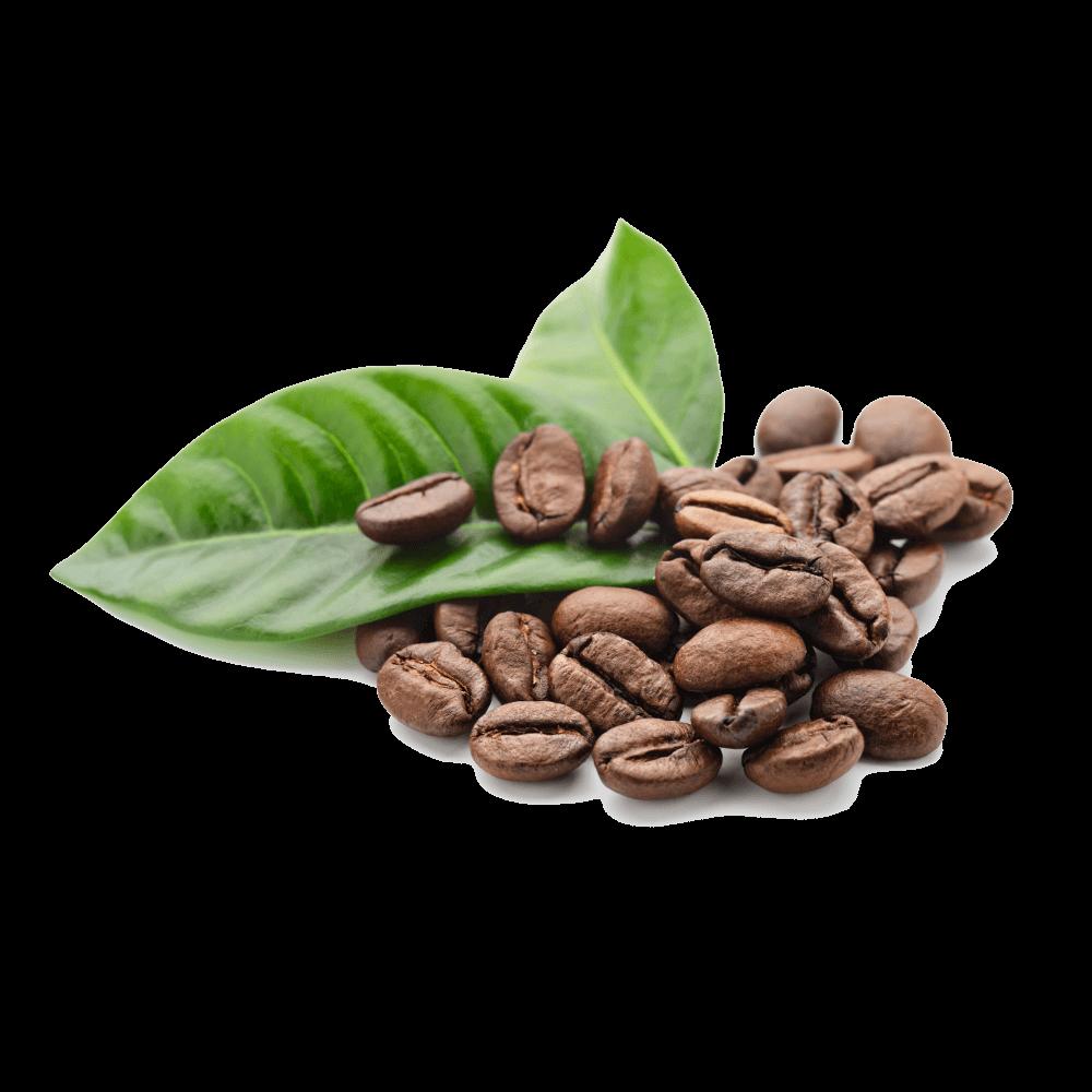 traceable Organic Ethiopian coffee