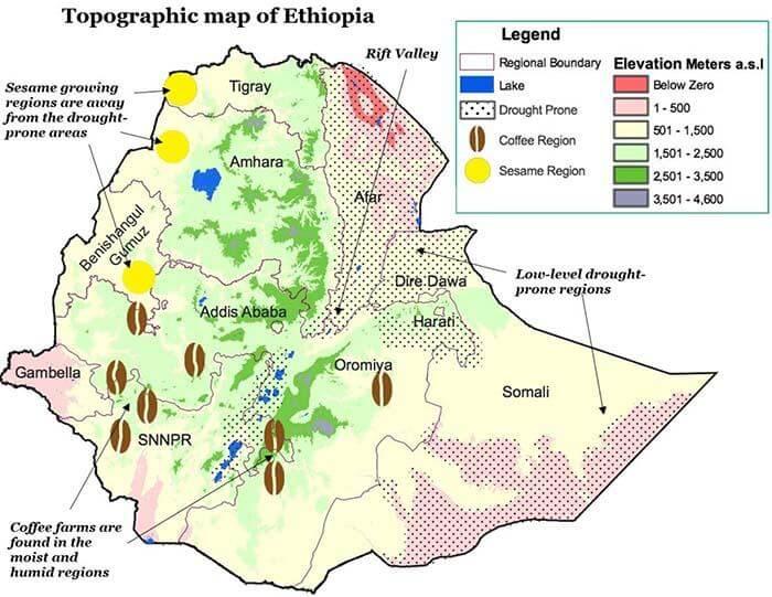 Ethiopian coffee map
